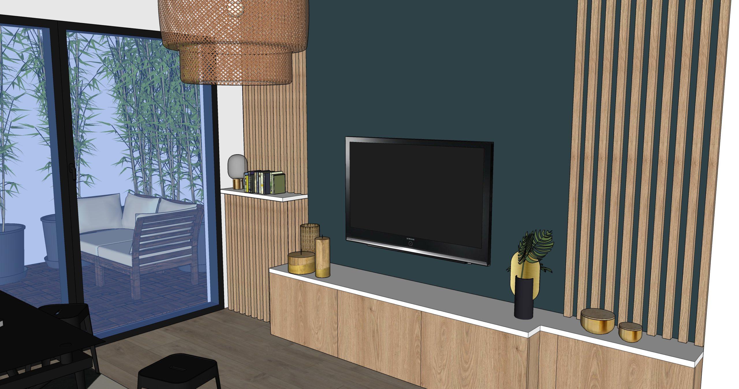 Projet STMAUR 9 avenue du château VUE TV JARDIN